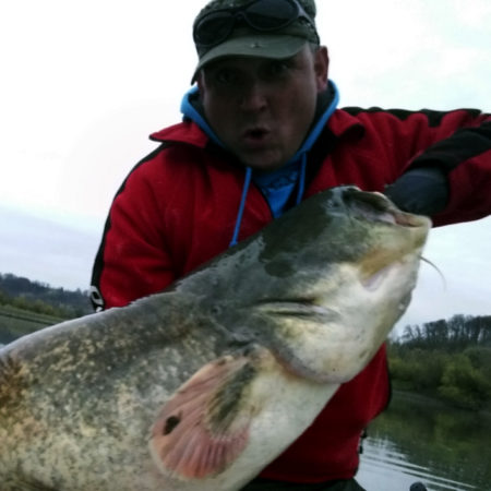 Catfish fishing in Austria with fishing guide Gerald Smutek