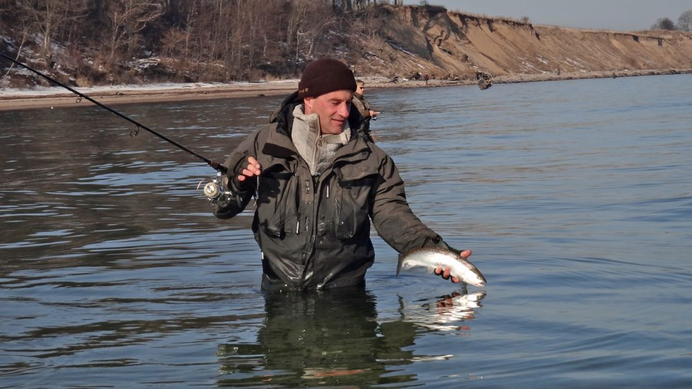Sea trout fishing on the Baltic coast with fishing guide Michael Wolf